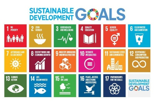 Implementing the Sustainable Development Goals